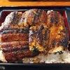 [島根]松江のうなぎ丼「大はかや」炭火焼きの風味が絶品!|出雲大社から一畑電車でローカル線の旅