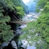 【かずら橋】四国・徳島のオススメ観光スポット【日本三大奇橋】