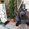 神戸・水道筋商店街をご紹介ネル~!Part2