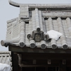 2021年雪景色「石川門」