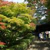 秋の北鎌倉はぶらぶら散歩するだけで楽しい