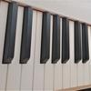CASIO(カシオ)の電子ピアノを買った【Privia PX-S1000とCDP-S150の比較】