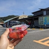 22日目 本土最南端佐多岬 鹿屋→佐多岬