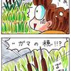 蒲の穂の爆発モフモフを夢見て…