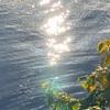 ◆魂は経験を光にかえる