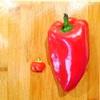 家庭菜園で心も体も豊かに