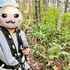 森のソラニワ野外アスレチック「ムササビ」子ども&大人が楽しめる野外施設の体験レポート!子連れ旅行にオススメ