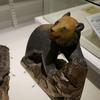 北海道博物館でこれが気になりました。