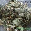 美味しい「自家製どくだみ茶」が私のアレルギーに効果的!! 作り方とブレンド法!