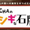 【池袋東口】デートにおすすめ!猫カフェMoCHAの謎解き「MoCHAのフシギな石版」