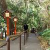 11月末日:「等々力不動尊」から「日本庭園」をお写んぽ。