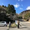 【兵庫】甲山で八十八ヶ所巡り