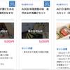 泉佐野市100億円キャンペーン、売り切れ商品も!