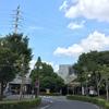 子供と遊ぶ温水プールなら「船橋アリーナ(船橋市総合体育館)」か「千葉県国際総合水泳場」