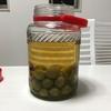 【231日目】自家製の梅酒を2度目の開封