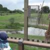 鹿児島市平川動物公園に行きました