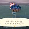 逃げ回るオオシャコガイを捕ったどー【あつ森日記】