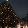 池袋の西口と東口と、1日目 ~立教のクリスマスツリー~