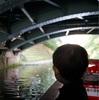 【富山旅行記03】松川遊覧船に乗って、2歳児とのんびり