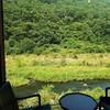 【密陽/ミリャン】開放感たっぷり!緑を眺めながらお茶できるカフェ