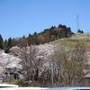 桜を見に(5)中之条ガーデンズの桜