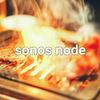 SonosのNode-RED向けノードを更新して様々な情報を取得できるようにしました
