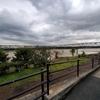 水の引いた相模川 相模大橋付近を自分の目で見てきました。