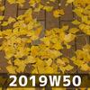 週報 2019W50