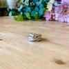 蛇の指輪を貰った