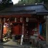 バリゴヤの頭〜稲村ケ岳〜大日山