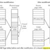 Linux KernelにおけるCopy On Write(CoW)の仕組み(概要編)