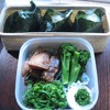 Vol.250-鶏手羽酢煮とおにぎり弁当(\400.-)