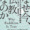 なぜ今、仏教なのか【本紹介】進化心理学からみる瞑想の効果