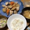 鶏肉とがんも煮 ・ごぼうサラダ