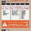 【図解】ヒアリ(火蟻)に刺された時の症状と対処