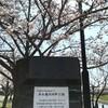 「マダム倶楽部」活動報告 川沿いの公園も桜満開♪ 4月4日