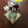 花と緑じかん・パンジー1輪挿し【小さな幸せのひととき】#17