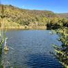 平野池(和歌山県和歌山)