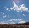 富士山のまわりツアー.4【富士山】