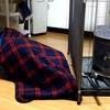 薪ストーブ 設置完了! 冬の準備順調に進んでいます