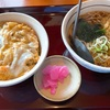 【山田うどん食堂】定番のかき揚げ丼