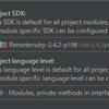 IntelliJ IDEA で Ruby をリモートで Run/Debug しようとしてできなかった話