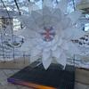 12月1日〜2月14日まで、JR苫小牧駅南口・駅前広場で、とまイルドーム開催!