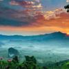 泰国的仙人生活
