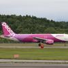 新千歳空港「生コンポイント」で飛行機撮影 北海道放浪の旅 5日目⑧