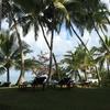 スリランカでアーユルヴェーダ5 まずは体を慣らす事から
