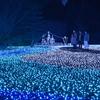 奈良で開催される2月のイベントといえば「瑠璃絵」