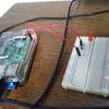 Raspberry Pi - 電子回路のLチカをやってみる