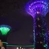 YouTube 【ガーデンズバイザベイ無料ショー】マリーナベイサンズ横で毎晩開催されている無料ショー。植物園無料エリアだから、入場券不要!【シンガポール観光スポット】