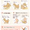 【犬イラスト】ペットがヒアリに刺された場合の対処法